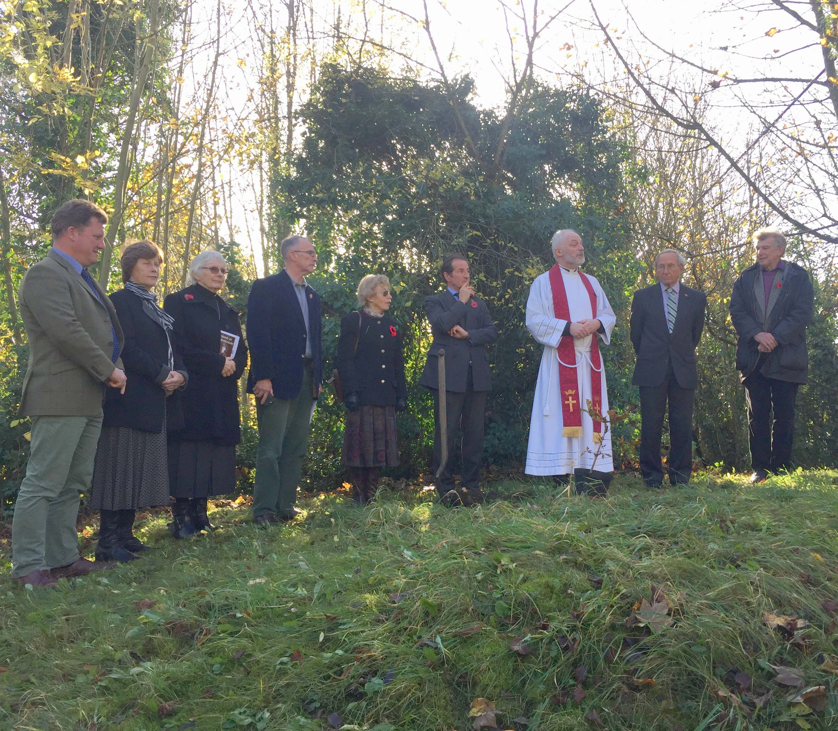 Centenary Chestnut Tree Planted