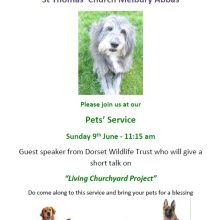 Melbury Abbas Pet Service - 9th June